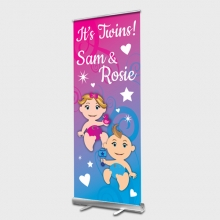 Baby Twins Rollup banner